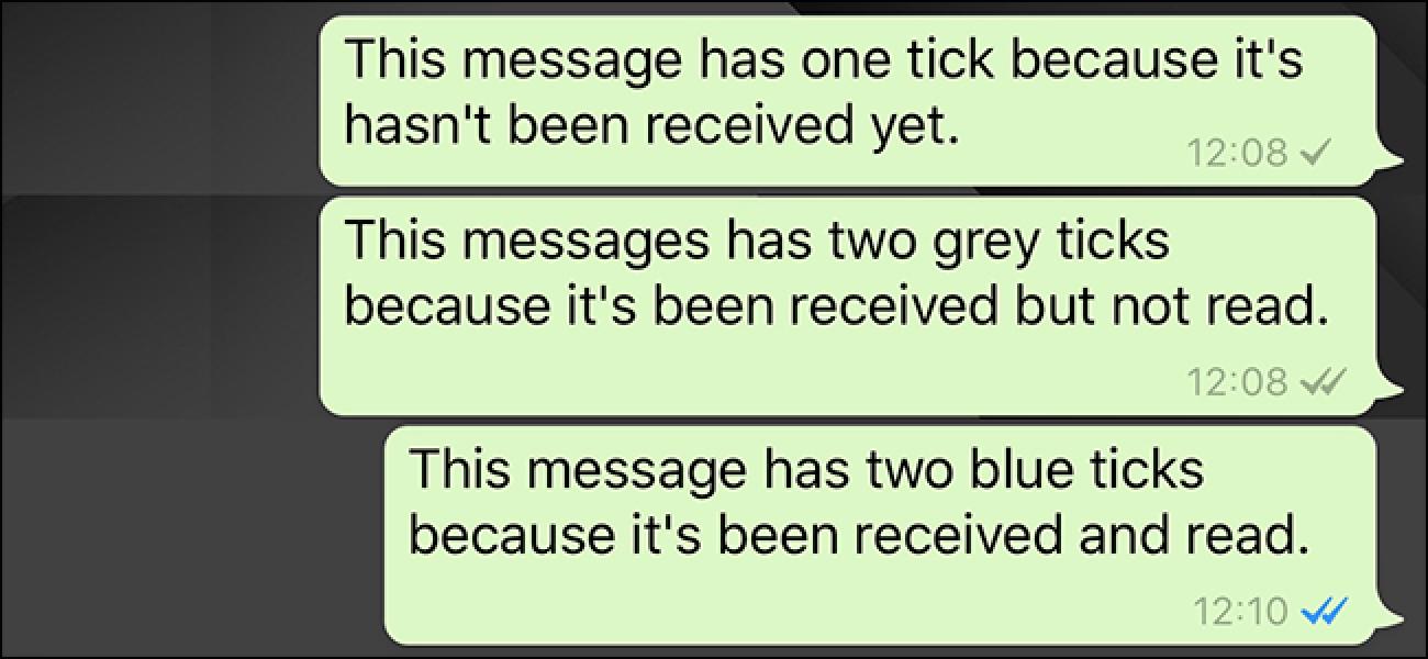 Zer esan nahi dute Whatsapp-eko marka txikiek?