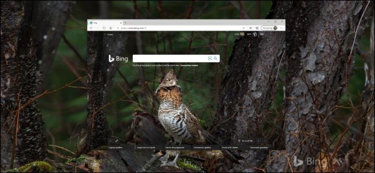 Nola eskuratu Bing-en eguneroko argazkiak zure horma-irudia gisa Windows 10