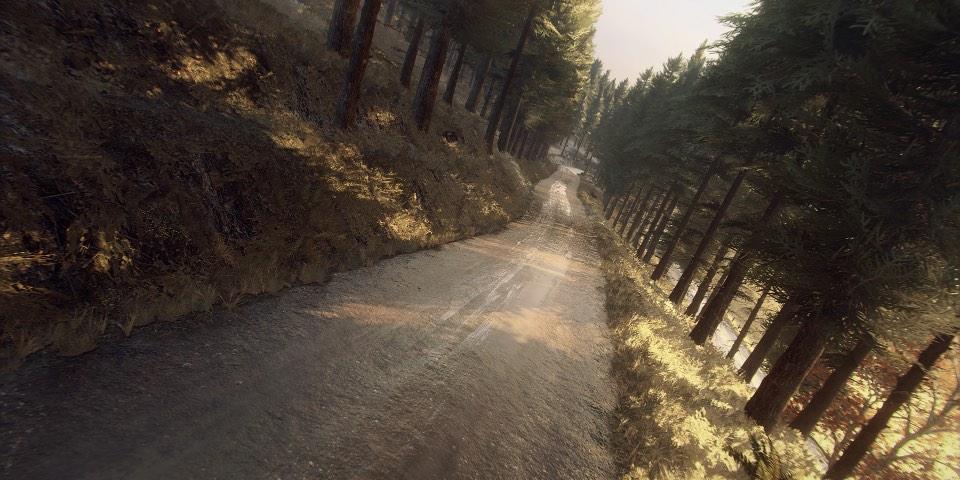 DiRT Rallya 2.0 - Colin McRae: FLAT OUT Iritzia 2