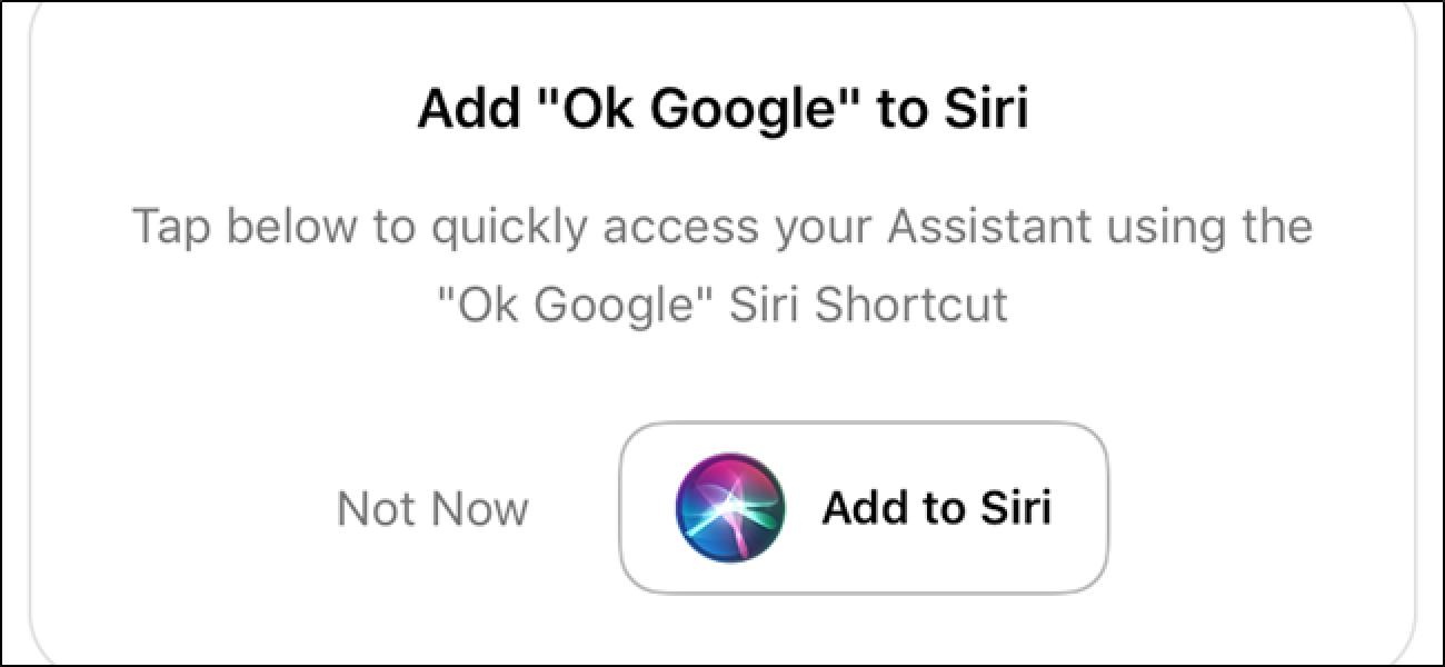 Egin Siri Suck Less gutxiago Erabiltzeko esanez Google Assistant