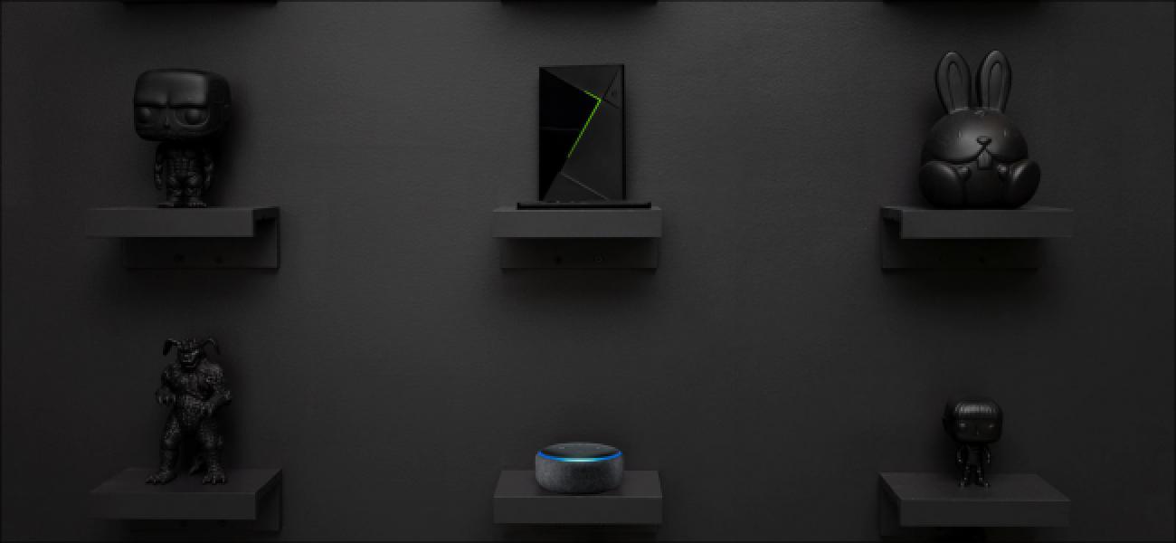 Orain zure NVIDIA SHIELD telebista kontrolatu dezakezu Amazon Echo