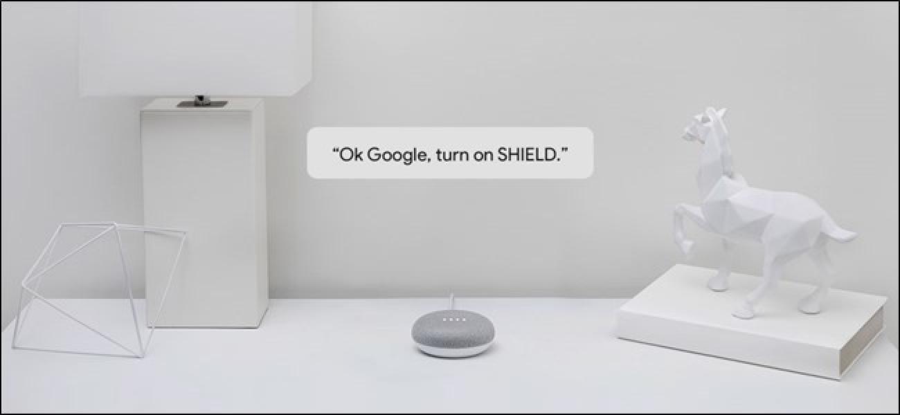 Laster NVIDIA SHIELD kontrolatu ahal izango duzu Google Assistant