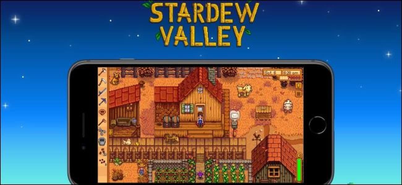 Stardew Valley Mugikorrerako Zure PCa gordetzeko jokoak inportatuko dizkizu