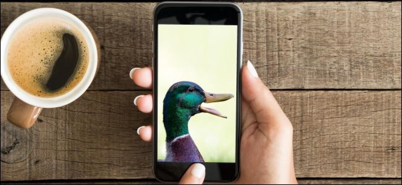 IPhone nola zuzentzen duzun Jokatzea uzten dizu