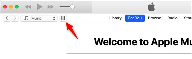 Nola itzuli iOS 11ra (iOS 12 Beta erabiltzen ari bazara) 4