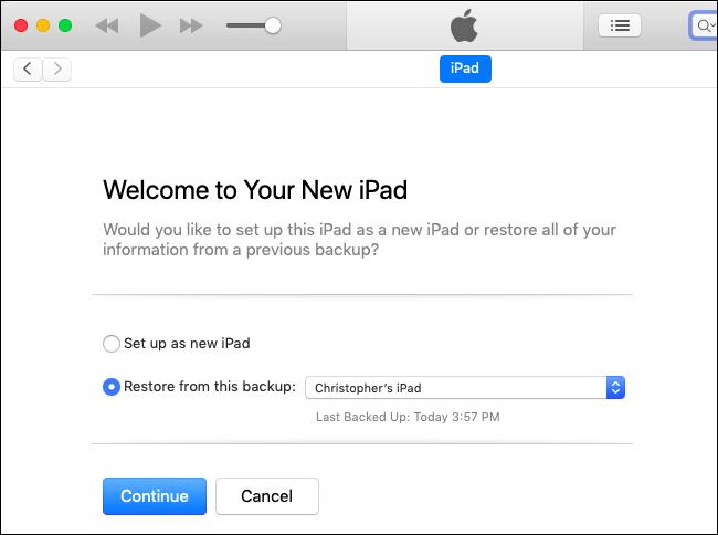 Nola itzuli iOS 11ra (iOS 12 Beta erabiltzen ari bazara) 9