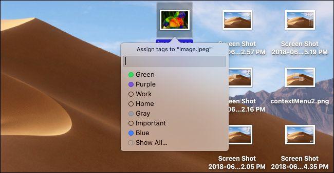 Nola antolatu zure mahaigaina pilekin MOSO Mojave-n 7