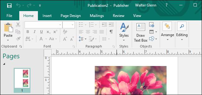 Zein da Microsoft Office-ren arteko aldea Windows eta macOS? 2