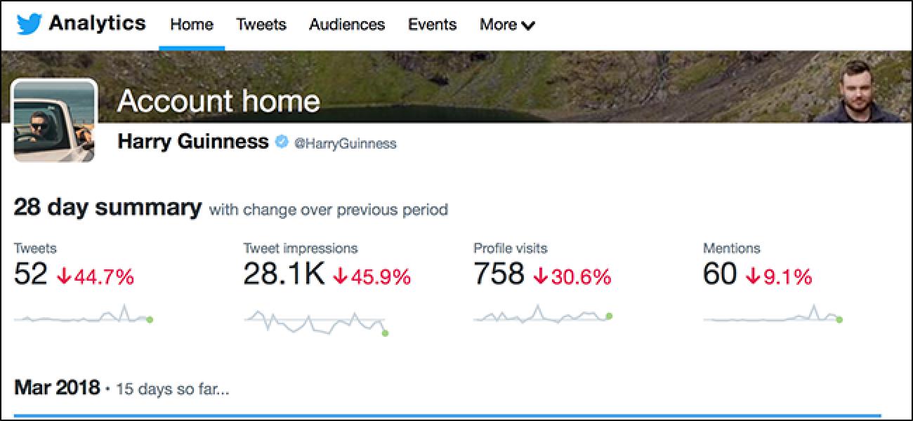 Ikus dezakezue nor ikusi duzun Twitter Profila?