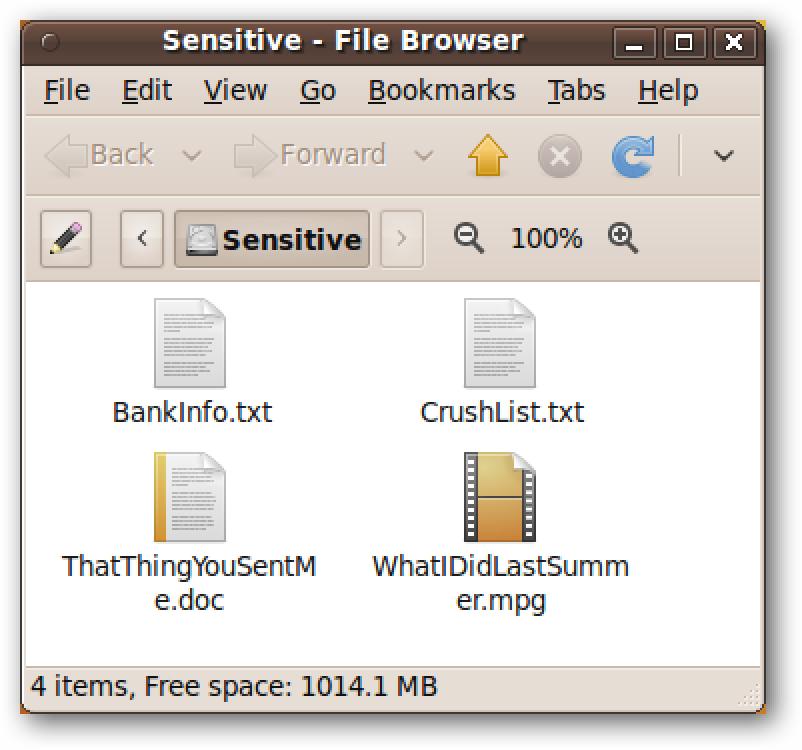 Erabili Ubuntu Live CDa zure ordenagailuko disko gogorra garbitzeko