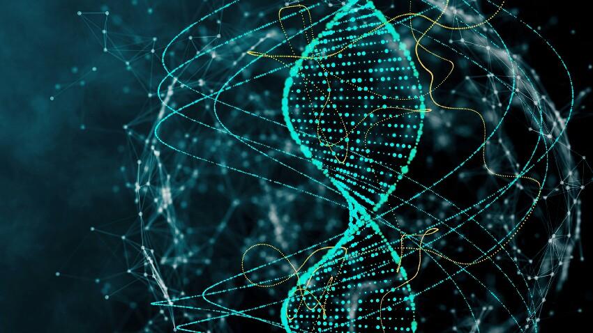 DNA erabiltzen zuten enpresak