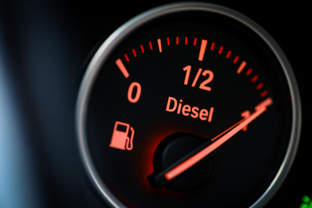 Diesel autoak oso ondo ikusten dira