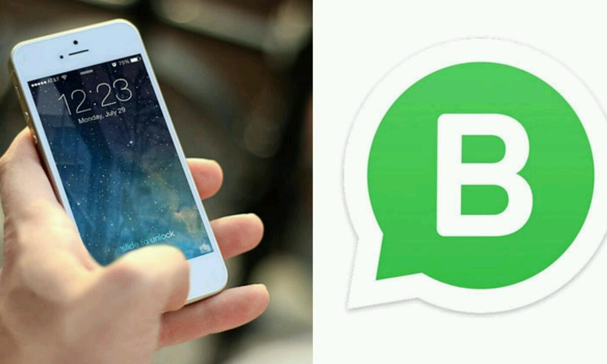 IOS WhatsApp Business-en bertsioa iritsi da!