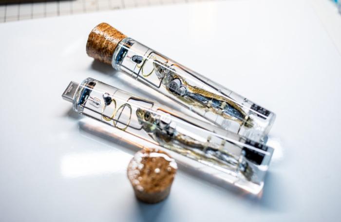 Japoniarrek USB makila bat atera zuten arrainen garun txikitik eta salgai jarri zuten