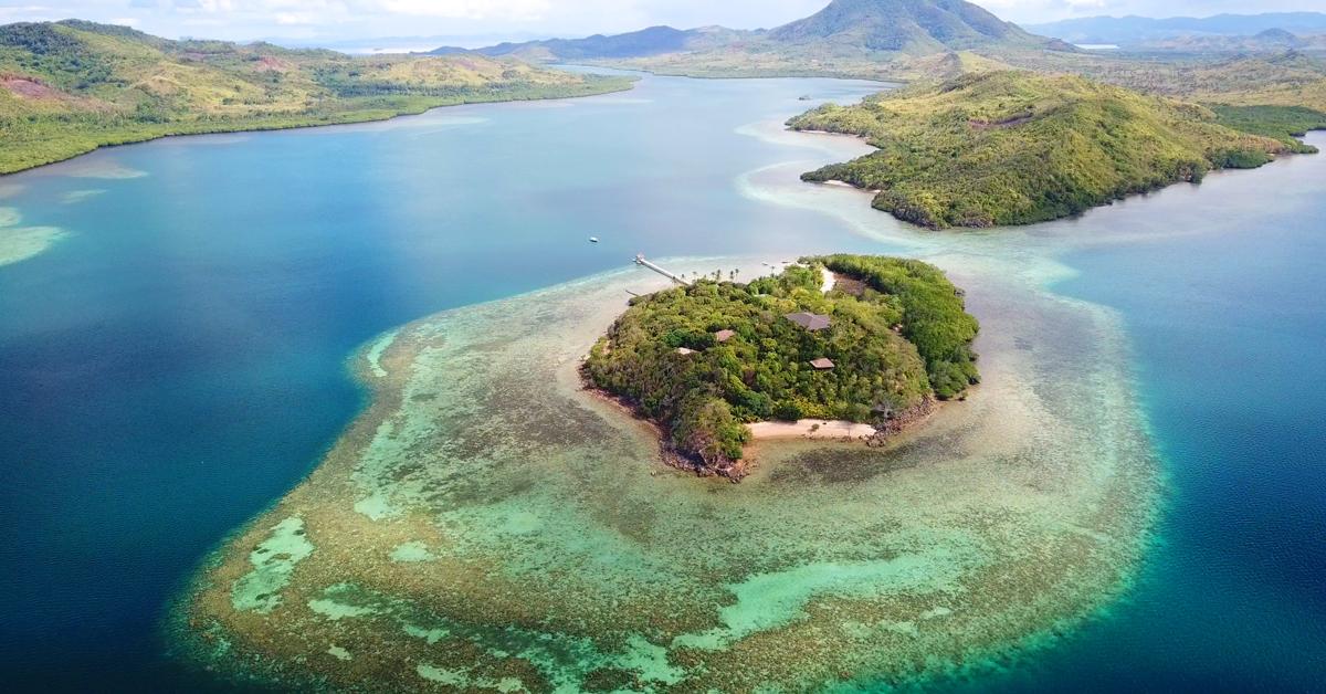 Lurraren Nazioarteko Eguna: CORaiLek adimen artifiziala erabiliko du koralezko arrezifeak salbatzeko