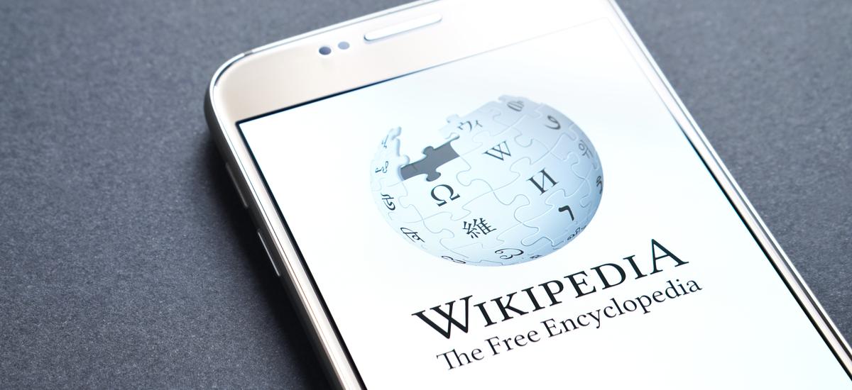 Wikipediak ez du funtzionatzen. Webgune guztietan porrot larria dago