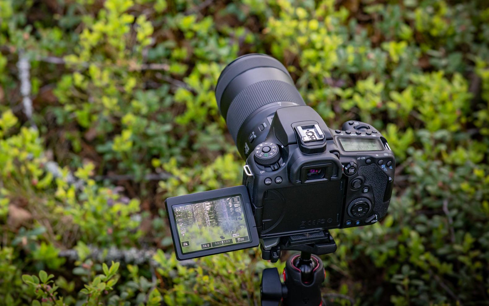 Canon EOS M6 Mark II eta EOS 90D ofizialki.  Nerabe bizkorra eta begirada detektatzen duen SLR bat