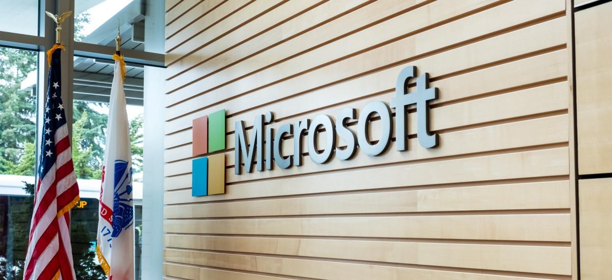 Microsoft-en emaitzak beti bezala zoragarriak dira, baina Xbox enpresako benetako ardi beltza bihurtu da