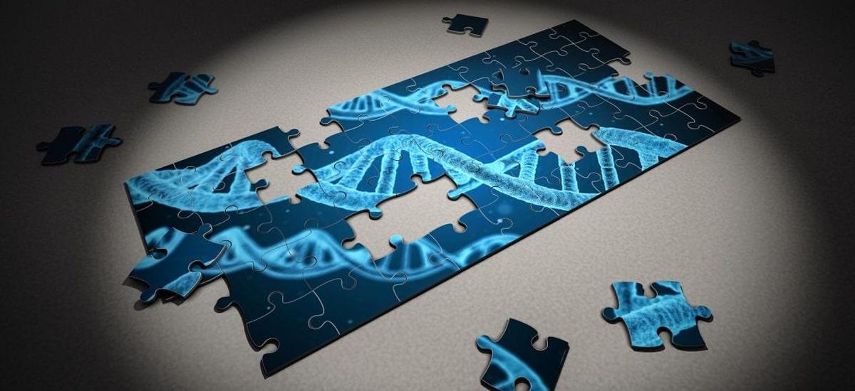 ADN sekuentziazioa aberatsek bakarrik ordaindu dezaketen prebentzio berria da.  Polonian merkea da