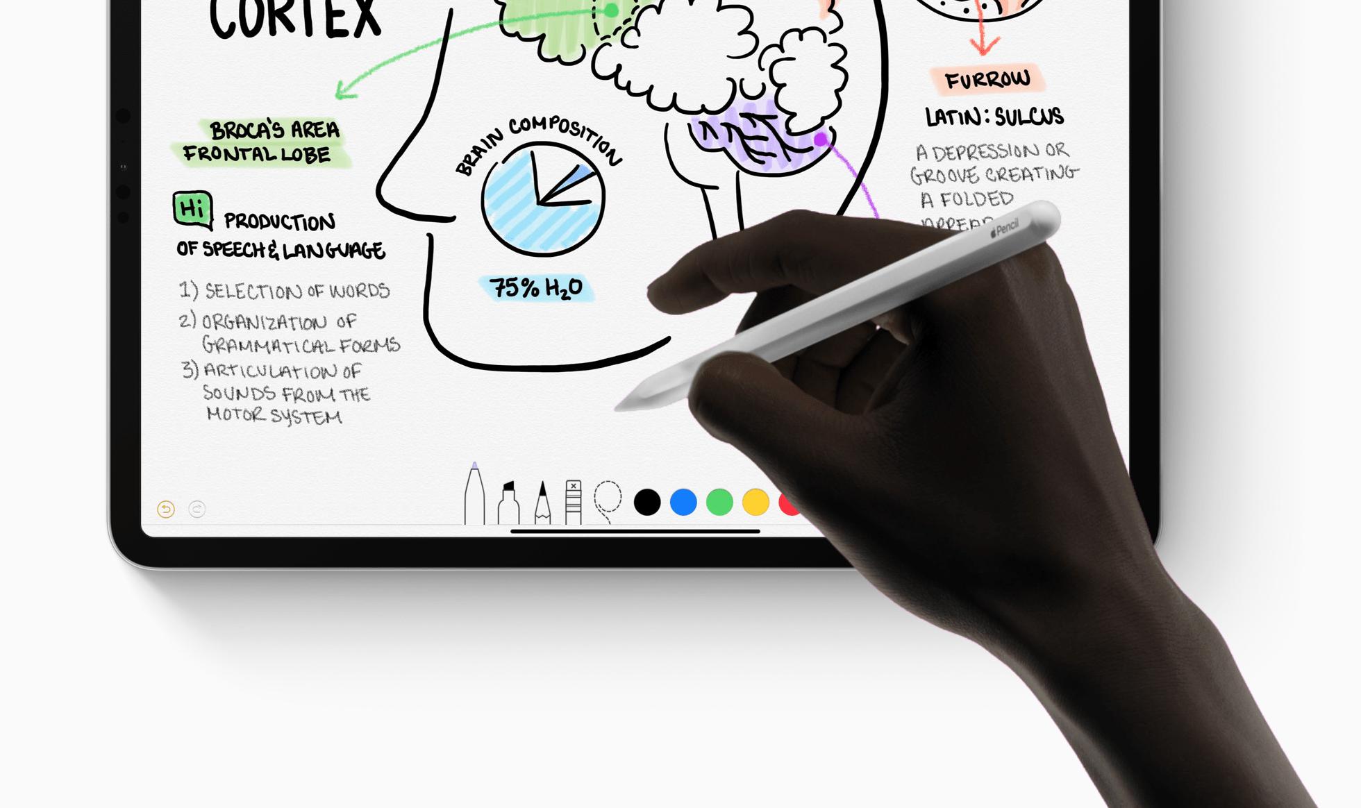 Adobe-k iPad-a ordenagailu eramangarri bihurtu nahi du.  Photoshop ez ezik, Illustrator ere sortu da berarentzat
