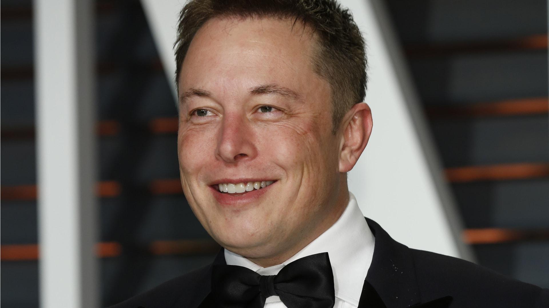 Basogintza Internet konkistatzen du.  Elon Musk-ek Treelon izenarekin aldatu zuen eta milioi bat zuhaitz sortu zituen