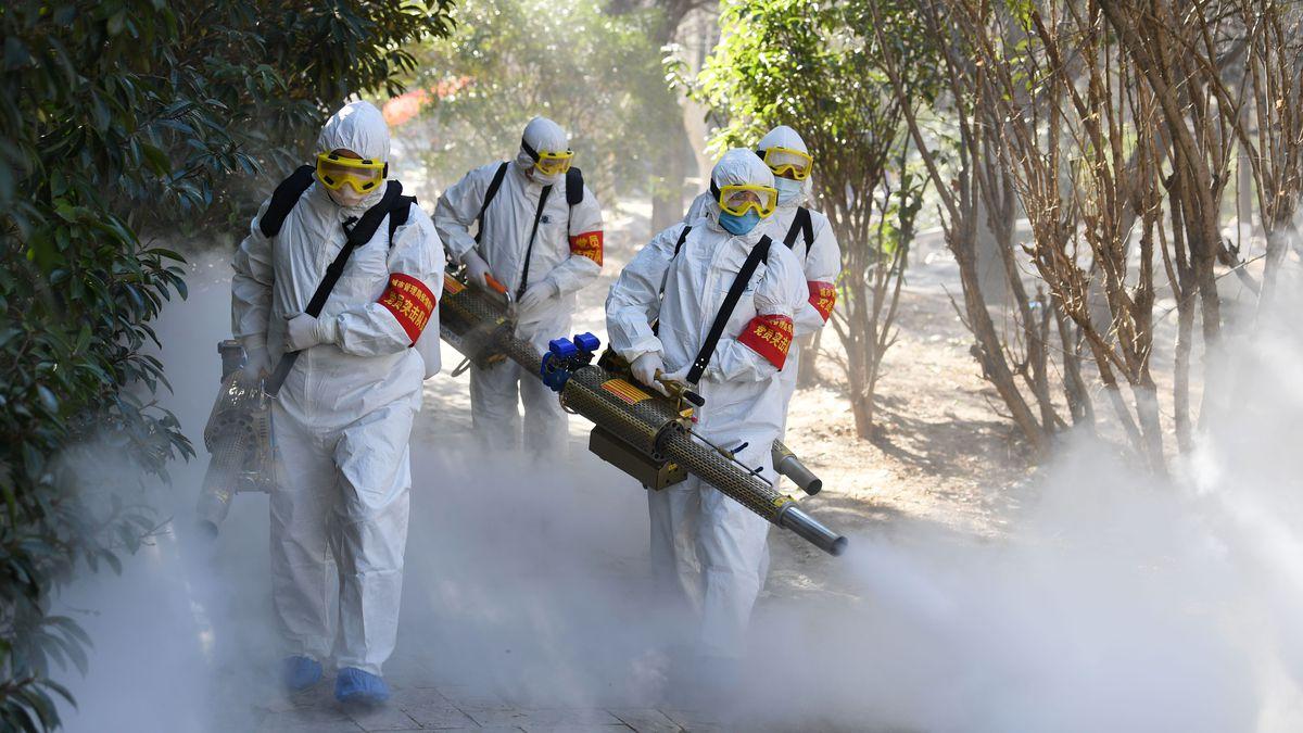 Coronavirus laborategiko ezarpenetan garatzen al da?