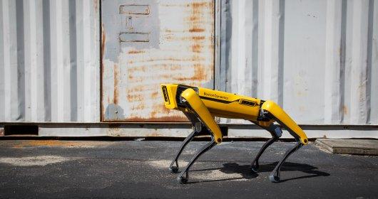 Ezagutu Lata.  Programatu daitekeen Boston Dynamics lau hankako robot bat da