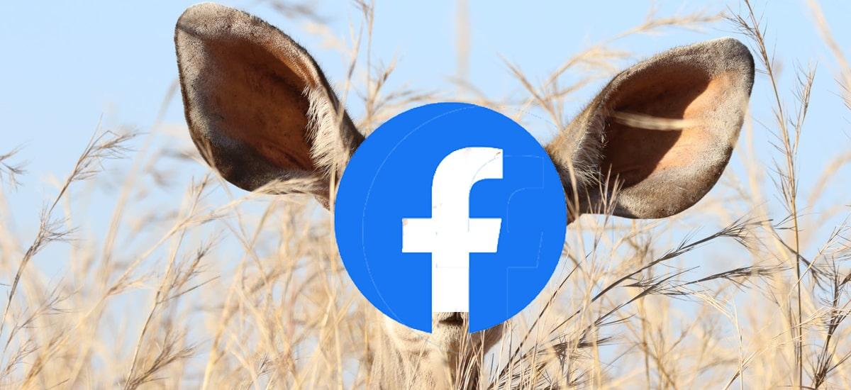 Facebook Messenger-en zure elkarrizketak entzun eta idazteagatik ordaintzen du