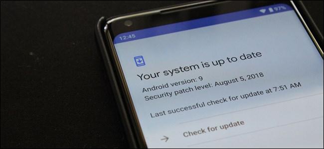 Google-k esan nahi du eguneratze azkarragoak datozela: Android telefono mugikor guztiak proiektuaren azterketa barne 1