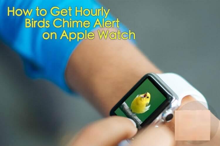 Nola iritsi orduko hegazti eta alarma hotsak Apple Watch