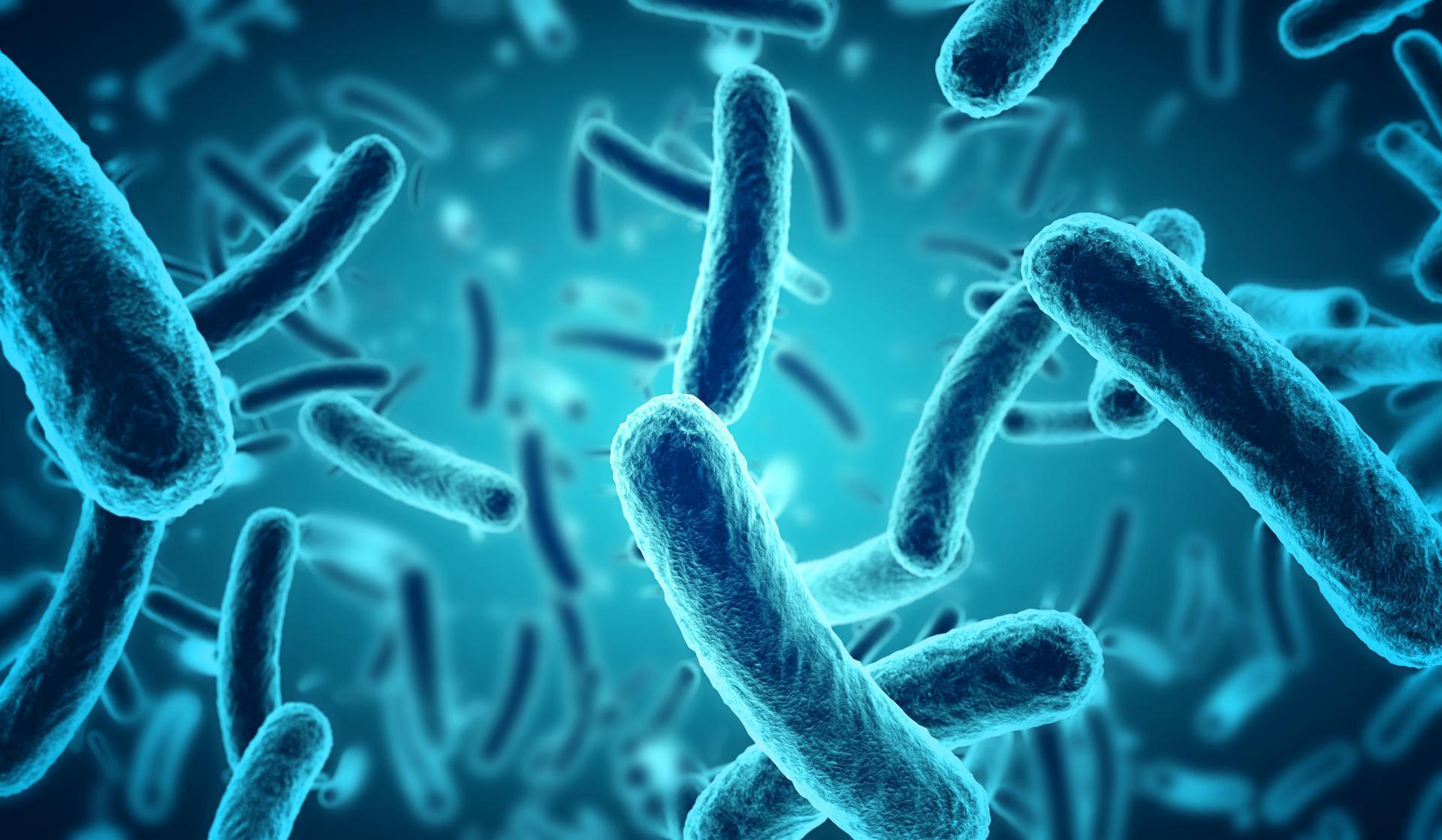 Zientzialariek karbono dioxidoaz elikatzen diren bakterioak sortu dituzte