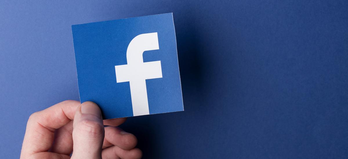 """Facebook modu iluna aurkezten du.  """"Udaberria iritsi aurretik lortuko dugu"""""""